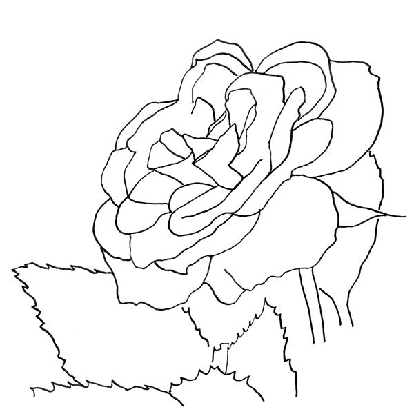 A line drawing of a rose black on a white background