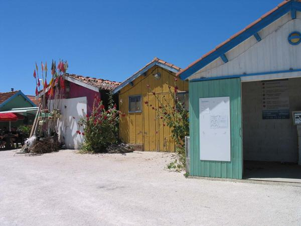 Photo shows colourful fishermens huts with matching planting