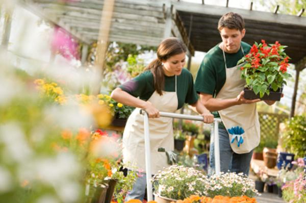 A picture of two workers in a garden center.