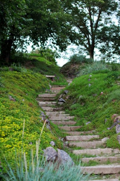 A photograph showing a stepped pathway on a garden slope.