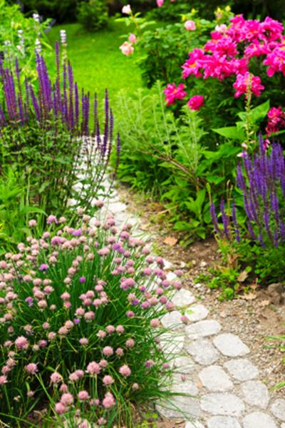 A photo of a garden path made from stone leading to a lawn with colourful planting at each side